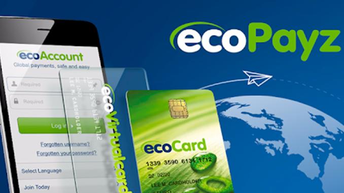 EcoPayz Nedir?